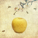 Fruta como consecuencia Abstarct Imágenes de archivo libres de regalías
