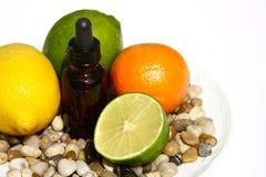 Fruta cítrica Aromatherapy Imagen de archivo