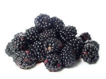 Fruta da amora-preta ou da amora Fotografia de Stock