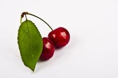 Fruta da cereja Imagens de Stock