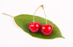 Fruta da cereja Imagem de Stock Royalty Free