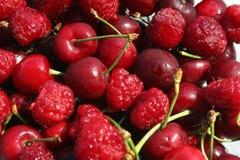 Fruta da estação Imagem de Stock Royalty Free