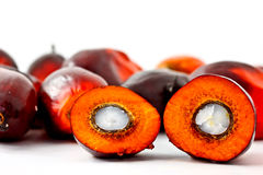 Fruta da palma de petróleo do corte Fotografia de Stock Royalty Free