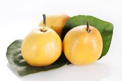 Fruta da pera Imagens de Stock Royalty Free