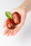 Fruta da tâmara secada Fotografia de Stock Royalty Free