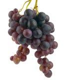 Fruta da uva Imagens de Stock