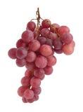 Fruta da uva Foto de Stock Royalty Free