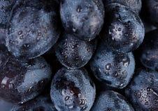 Fruta da uva fotografia de stock royalty free