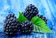 Fruta de Blackberry con la hoja Imágenes de archivo libres de regalías