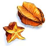 Fruta de estrella - carambola ilustración del vector