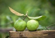 Fruta de guayaba imagenes de archivo