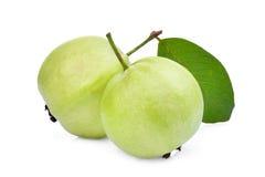 Fruta de guayaba entera dos con la hoja verde en blanco Fotografía de archivo libre de regalías