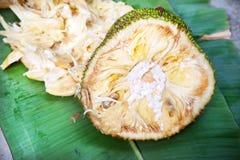 Fruta de Jack Foto de Stock