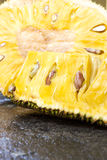 Fruta de Jack cortada Fotos de archivo libres de regalías