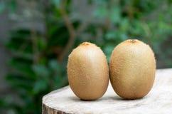 Fruta de kiwi en el vector de madera Imágenes de archivo libres de regalías