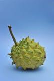 Fruta de la anona imagen de archivo libre de regalías
