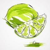 Fruta de la cal stock de ilustración