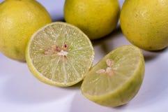 Fruta de la cal de la fruta cítrica aislada en el recorte blanco del fondo Fotos de archivo