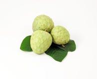 Fruta de la chirimoya Imagen de archivo libre de regalías