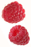 Fruta de la frambuesa Foto de archivo