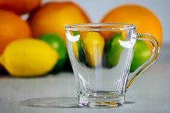 Fruta de la fruta cítrica, naranja, cal, limón, pomelo, pomelo Fotografía de archivo libre de regalías