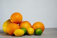 Fruta de la fruta cítrica, naranja, cal, limón, pomelo, pomelo Imagen de archivo
