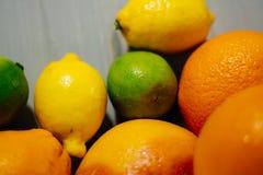 Fruta de la fruta cítrica, naranja, cal, limón, pomelo, pomelo Fotos de archivo libres de regalías