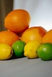 Fruta de la fruta cítrica, naranja, cal, limón, pomelo, pomelo Imagenes de archivo