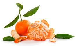 Fruta de la mandarina o del mandarín Imagenes de archivo
