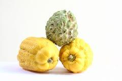 Fruta de la mano de Buda s y Na Foto de archivo