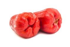 Fruta de la manzana de las huevas Fotos de archivo libres de regalías