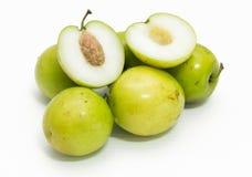 Fruta de la manzana del mono Fotografía de archivo