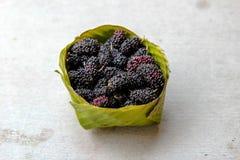 Fruta de la mora en verano Mora fresca mora org?nica en cuenco de la hoja del pl?tano foto de archivo