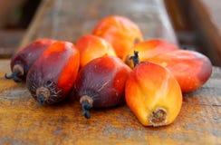 Fruta de la palma Fotografía de archivo