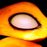 Fruta de la palma de aceite Fotos de archivo libres de regalías
