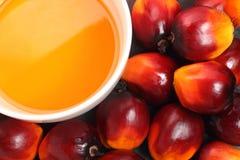 Fruta de la palma de aceite y aceite de cocina Imagen de archivo libre de regalías