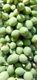 Fruta de la papaya Imágenes de archivo libres de regalías