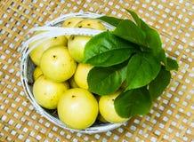 Fruta de la pasión Foto de archivo libre de regalías
