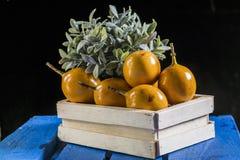 Fruta de la pasión Imagenes de archivo