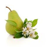 Fruta de la pera Fotos de archivo