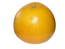 Fruta de la uva Imágenes de archivo libres de regalías