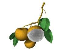 Fruta de Longan Fotografia de Stock Royalty Free