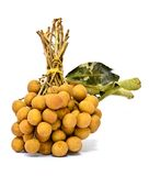 Fruta de Longan isolada Fotografia de Stock Royalty Free