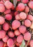 Fruta de los lichis (lichí chinensis) Fotografía de archivo