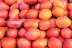 Fruta de los mangos Foto de archivo
