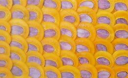 Fruta de Maprang Imagen de archivo libre de regalías
