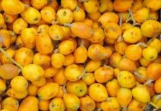 Fruta de Marula Imagem de Stock Royalty Free