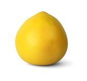 Fruta de Pamelo aislada en blanco Imagen de archivo