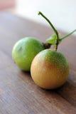 Fruta de pasión Imagen de archivo libre de regalías
