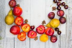 Fruta de piedra en la tabla de madera, visión plana del otoño Imágenes de archivo libres de regalías
